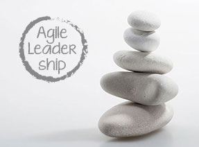 Agile Leadership 3.0 XING Gruppe